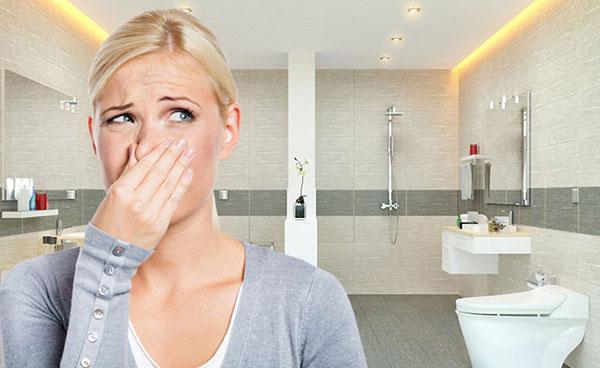 Có mùi khó chịu trong nhà vệ sinh do bọt khí bể phốt bị thoát ra.