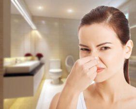 10 Cách khử mùi hôi trong nhà vệ sinh đơn giản mà hiệu quả nhất