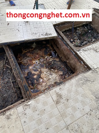 Mẹo xử lý hầm cầu bị đầy bằng cách nào?