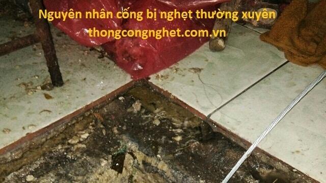 Những nguyên nhân gây nghẹt cống tại An Giang.